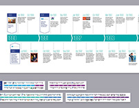 Corporate Infographics Collection Vol 2 (Timelines)