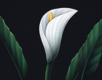Digital botanical arts