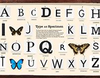 Type as Specimen