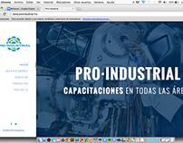 Pro Industrial: Sitio web