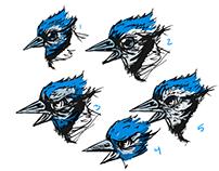 JayBird Duathlon, logo exploration