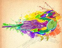 Birds Abstract