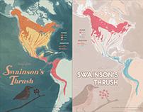 Bird Range Maps: Cartography & Wildlife