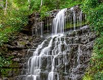 Cove Springs Park - Frankfort - Kentucky