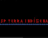 Brasil Terra Indígena