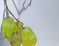 Gouache Grape Study