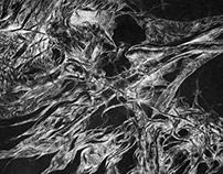 Decay | Drypoint matrix