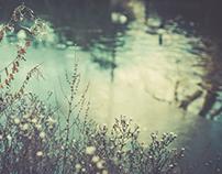 on peckham pond