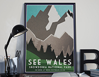 Visit Wales Poster