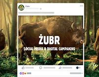 ŻUBR | Social Media & digital