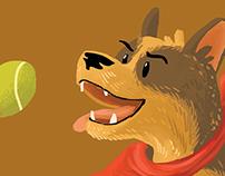 Bandit the Aussie Cattle Dog