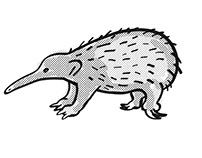 Western Long-beaked Echidna Endangered Wildlife Cartoon
