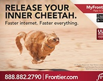 Frontier  - direct mail