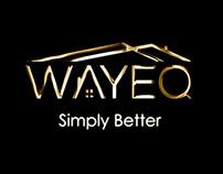 WAYEQ.COM explainer Video