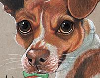 Pet Caricature of Rex