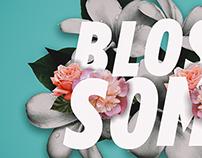 """花 / """"Blossom"""""""