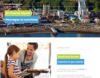 Landing page Metrogas