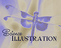 Science Illustration Posters