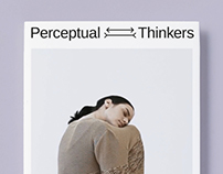 Perceptual Thinkers