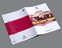 ESSEC & Mannheim Executive MBA Asia-Pacific | Brochure