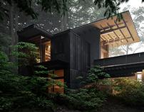 House at Longbranch / Full CG