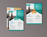 Business Flyer (A4 size) brand new