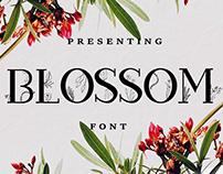 Blossom Slab Serif Font