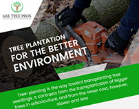 Tree Plantation for the Better Environment