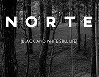 Norte (Black and White Still Life)