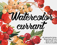 Watercolor currant