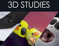 3D Studies