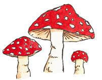 Mushrooms.