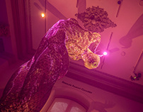 Renwick Gallery No Spectators: The Art of Burning man