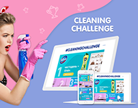 Landing Page Domestos Cleaning Challenge