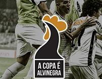 Atlético Mineiro, soccer champion