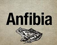 ¿Qué es el Periodismo Anfibio?