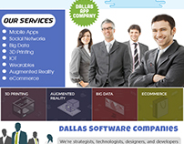 Dallas Software Company