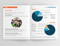 Christalis | 2013 Annual Report