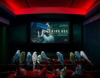 Netflix - Bird Box