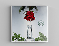 Catalog for The Body Shop ®
