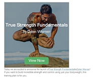 E-mail Marketing - True Strength Fundamentals