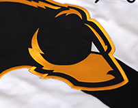 Oakland Bears Hockey Identity