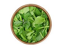 Giardino's Salad On the Fly