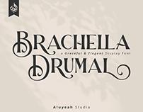 FREE | Brachella Drumal