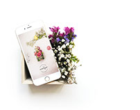 Ultraviolet Flower Shop Branding Design