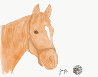 Horse - digital art
