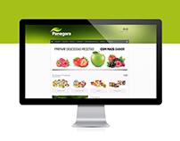 Website - Panegara