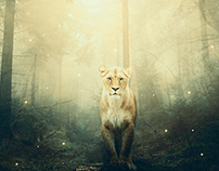 Lioness, photomanipulation