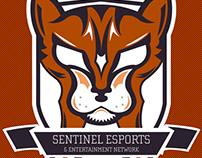 Sentinel eSports: Social Media Branding 2017