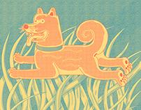 Little Dog in High Grass